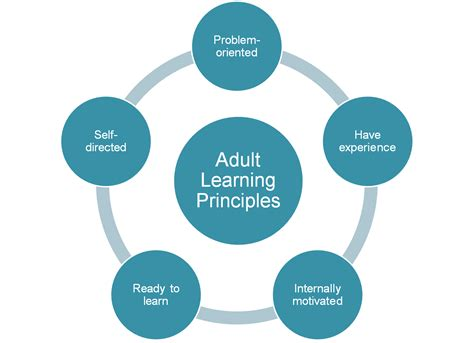 learning software adult png 1402x1016